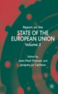 the different aspects of the european union that describes it as an intergovernmental organization European politics in the union  an organization whose goal is to the criticism made of the european union that there is a gap between the european.